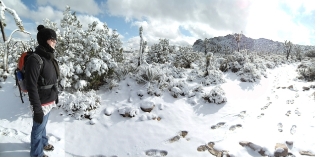 Mojave in snow1 sml (1)